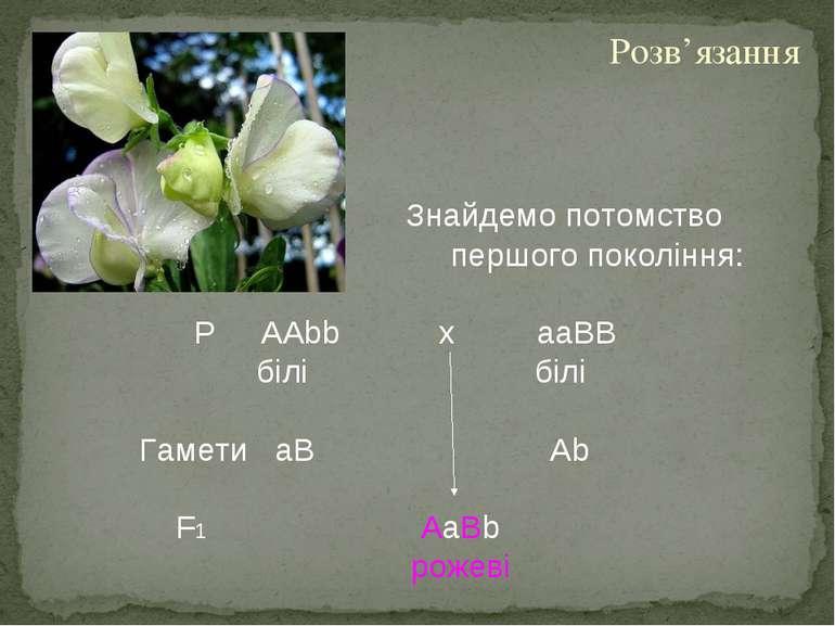 Знайдемо потомство першого покоління: Р AAbb х aaBВ білі білі Гамети aB Ab F1...
