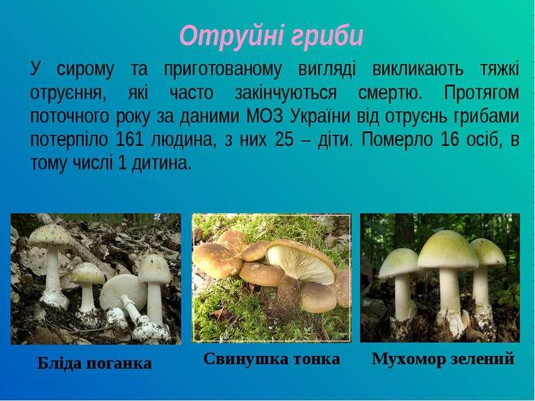 Отруйні гриби У сирому та приготованому вигляді викликають тяжкі отруєння, як...