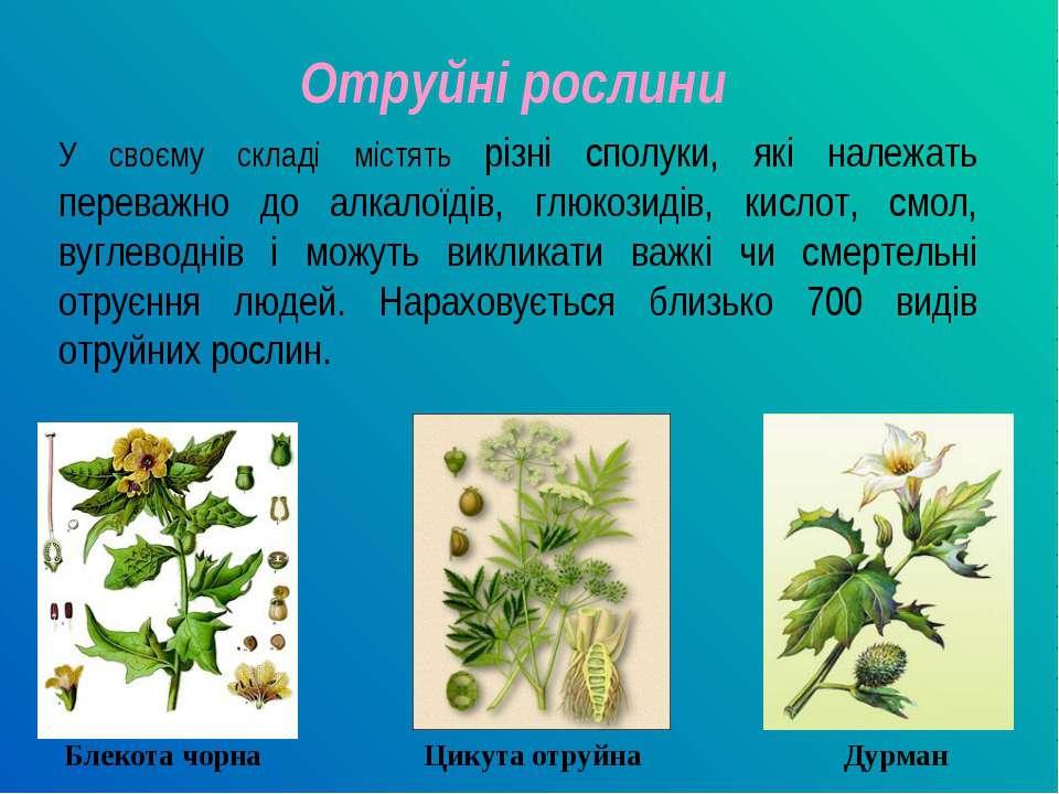 Отруйні рослини У своєму складі містять різні сполуки, які належать переважно...