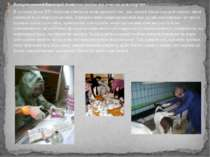 Використання бактерій біотехнологією та генною інженерією В останні роки XX с...