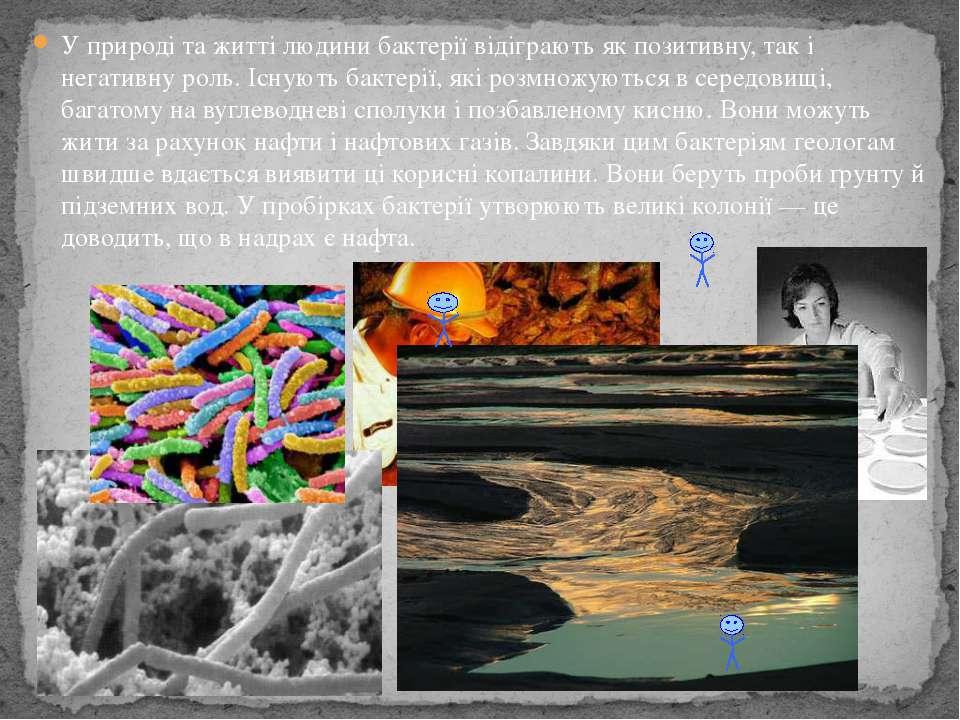 У природі та житті людини бактерії відіграють як позитивну, так і негативну р...