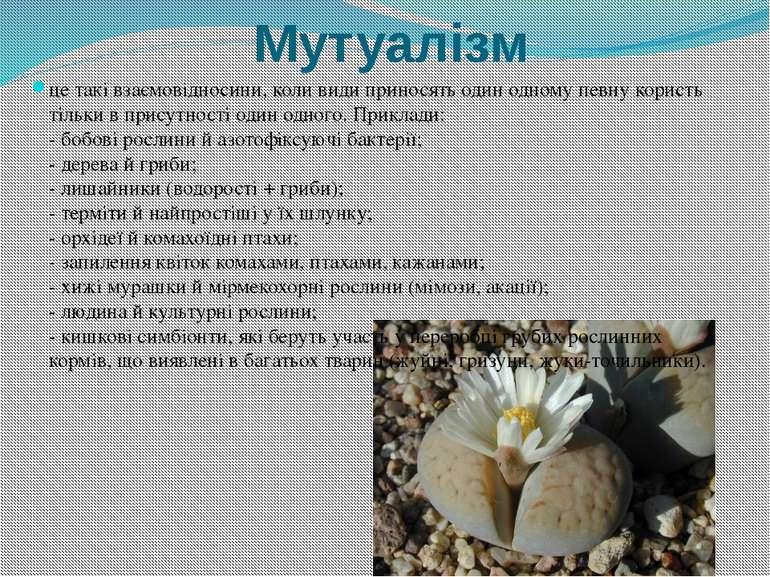 Мутуалізм це такі взаємовідносини, коли види приносять один одному певну кори...