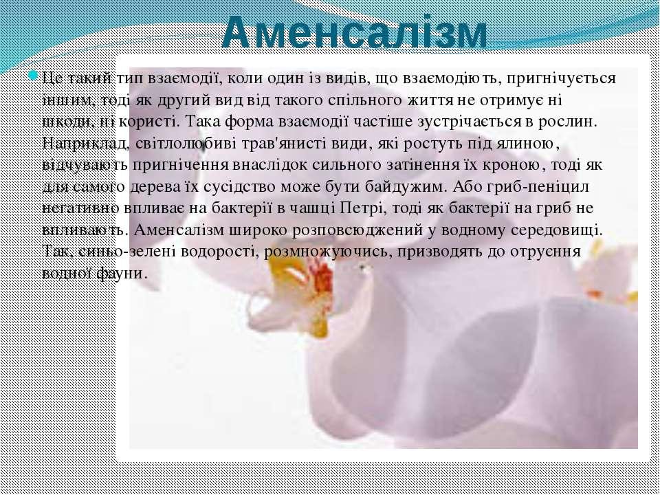 Аменсалізм Це такий тип взаємодії, коли один із видів, що взаємодіють, пригні...
