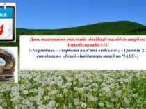 День вшанування учасників ліквідації наслідків аварії на Чорнобильській АЕС (...