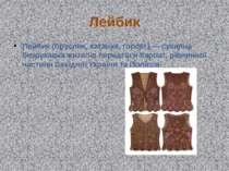 Лейбик Лейбик (бруслик, катанка, горсет) — сукняна безрукавка жителів передгі...