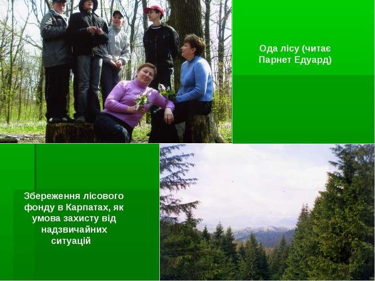 Ода лісу (читає Парнет Едуард) Збереження лісового фонду в Карпатах, як умова...