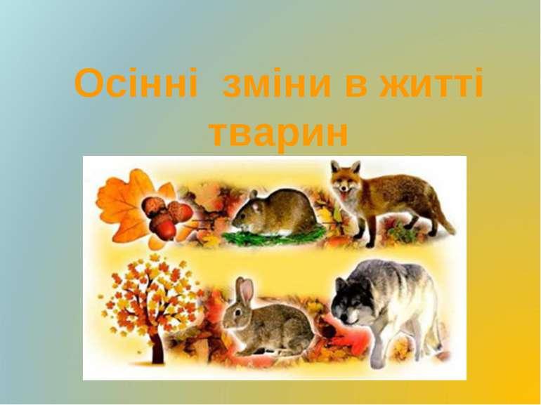 Осінні зміни в житті тварин