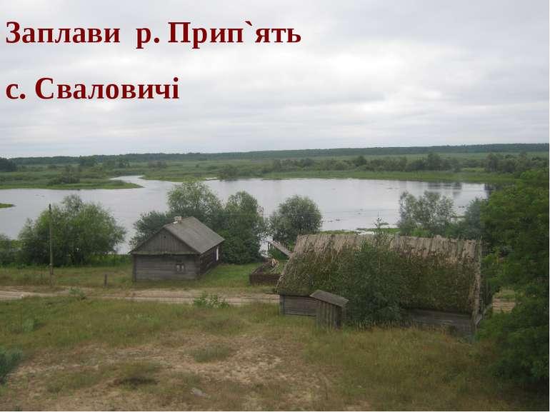 Заплави р. Прип`ять с. Сваловичі