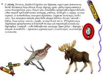 У лісах Полісся, Західної України та Карпат, окрім уже зазначених видів, водя...