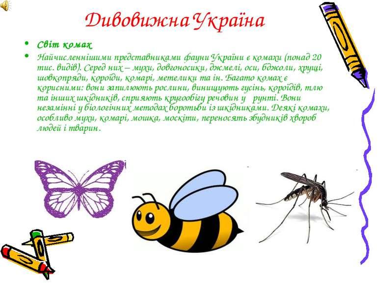 Дивовижна Україна Світ комах Найчисленнішими представниками фауни України є к...