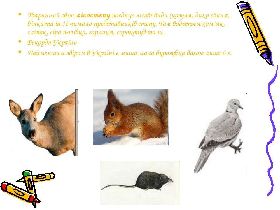 Тваринний світ лісостепу поєднує лісові види (козуля, дика свиня, білка та ін...