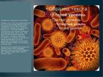Прокаріоти - мікроскопічні організми. Розміри їхніх клітин не перевищують ЗО ...
