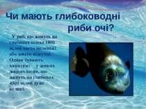 Чи мають глибоководні риби очі? У риб, що живуть на глибинах понад 1800 м, оч...