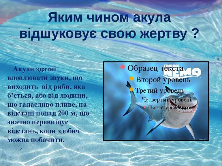 Яким чином акула відшуковує свою жертву ? Акули здатні вловлювати звуки, що в...