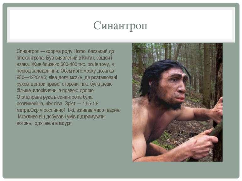 Синантроп Синантроп — форма роду Homo, близький до пітекантропа. Був виявлени...