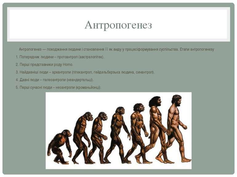 Антропогенез Антропогенез — походження людини і становлення її як виду у проц...
