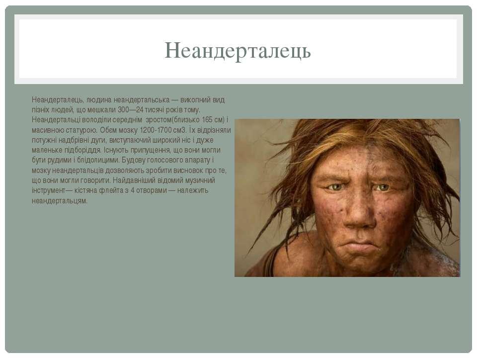 Неандерталець Неандерталець, людина неандертальська — викопний вид пізніх люд...