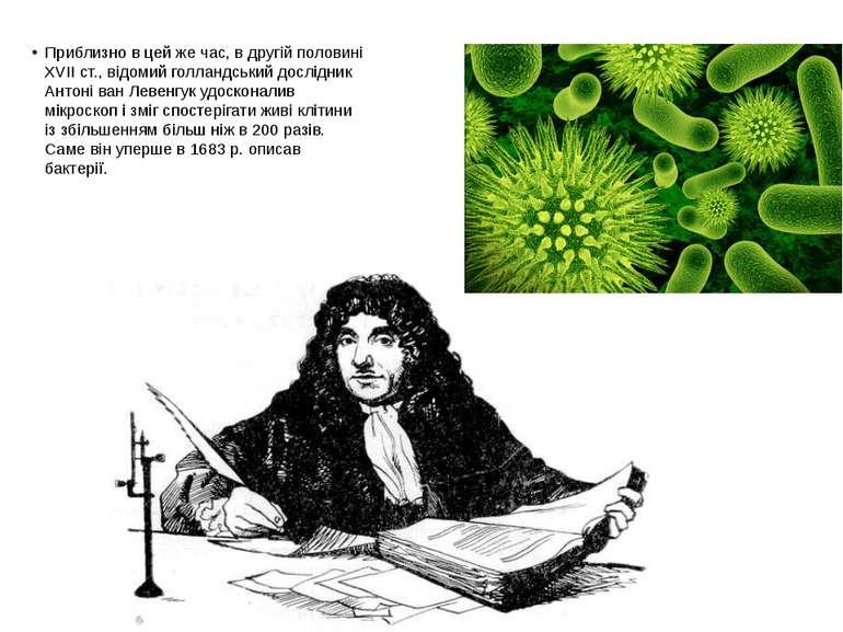 Приблизно в цей же час, в другій половині XVII ст., відомий голландський досл...