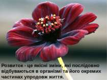 Розвиток - це якісні зміни, які послідовно відбуваються в організмі та його о...