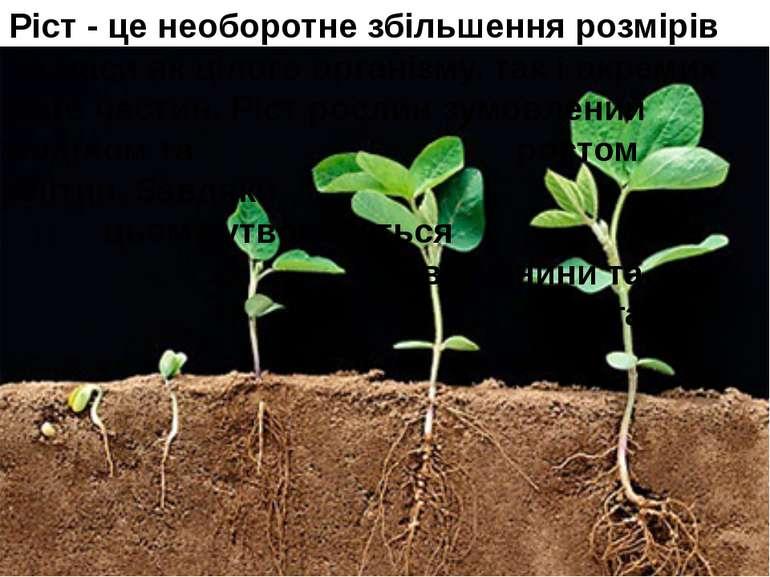 Ріст - це необоротне збільшення розмірів та маси як цілого організму, так і о...