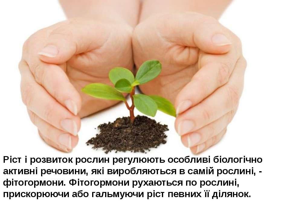 Ріст і розвиток рослин регулюють особливі біологічно активні речовини, які ви...