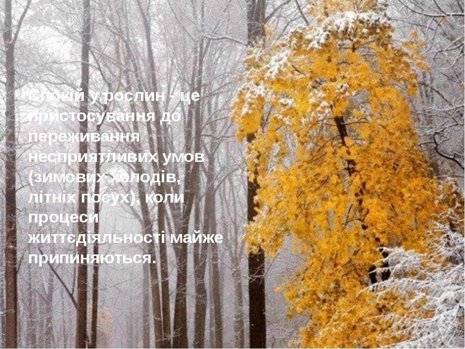 Спокій у рослин - це пристосування до переживання несприятливих умов (зимових...