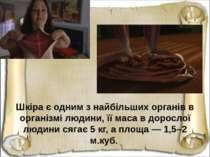 Шкіра є одним з найбільших органів в організмі людини, її маса в дорослої люд...