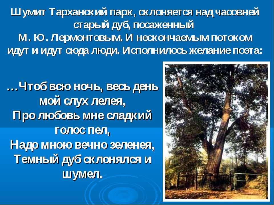 Шумит Тарханский парк, склоняется над часовней старый дуб, посаженный М. Ю. Л...
