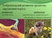Ембріональний розвиток організму- зародковий період починається закінчується ...