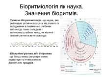 Біоритміологія як наука. Значення біоритмів. Сучасна біоритмологія - це наука...