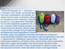 Бакте рії (від дав.-гр. — паличка) — одна з основних груп живих організмів. Д...