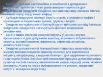 Значення бактерій у природі і житті людини Бактерії, зоктема Lactobacillus в ...