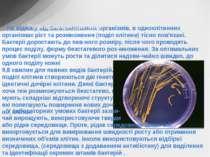 На відміну від багатоклітинних організмів, в одноклітинних організмах ріст та...