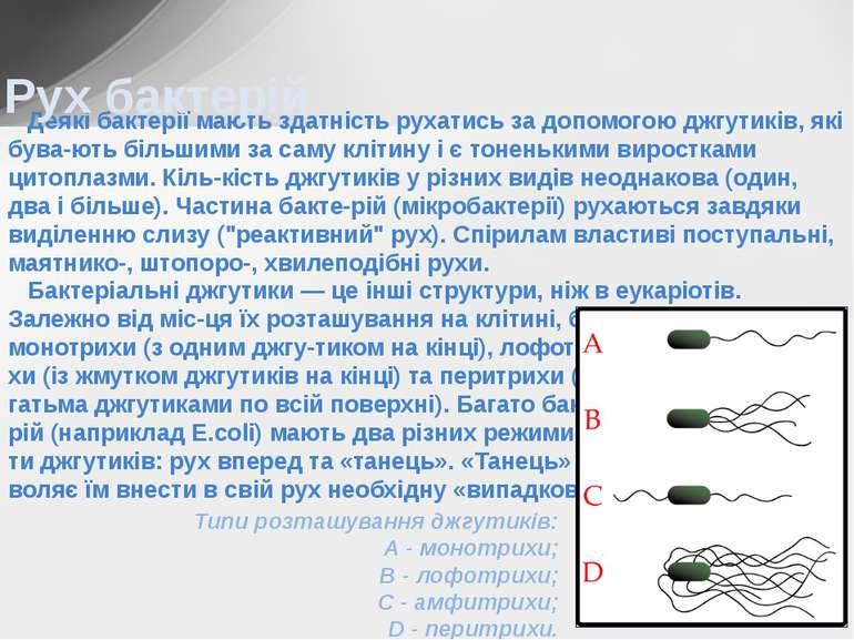 Деякі бактерії мають здатність рухатись за допомогою джгутиків, які бува-ють ...