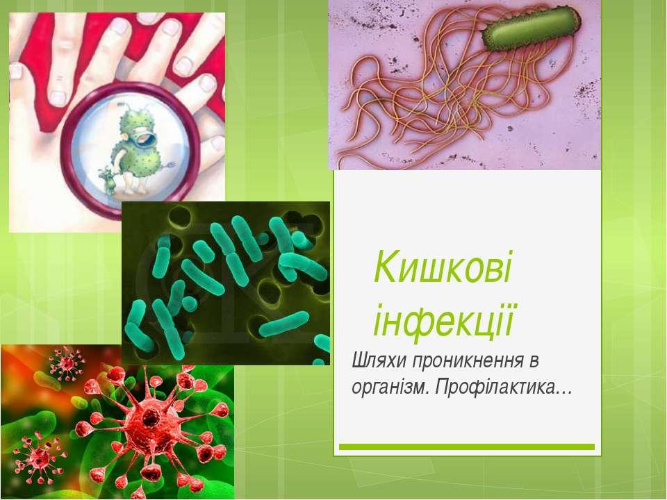 Кишкові інфекції Шляхи проникнення в організм. Профілактика…