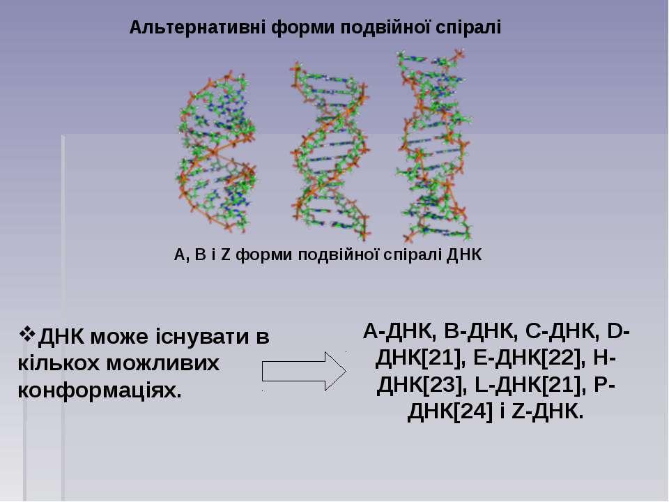 Альтернативні форми подвійної спіралі ДНК може існувати в кількох можливих ко...