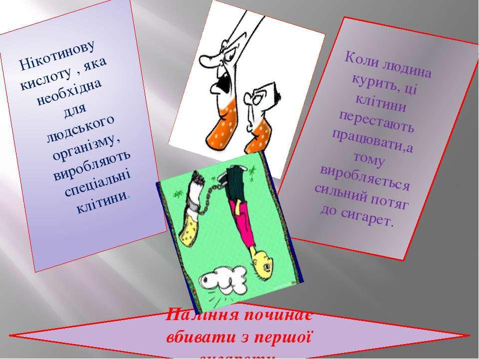 Нікотинову кислоту , яка необхідна для людського організму, виробляють спеціа...