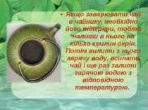 Якщо заварювати чай в чайнику, необхідно його підігріти, тобто налити в нього...