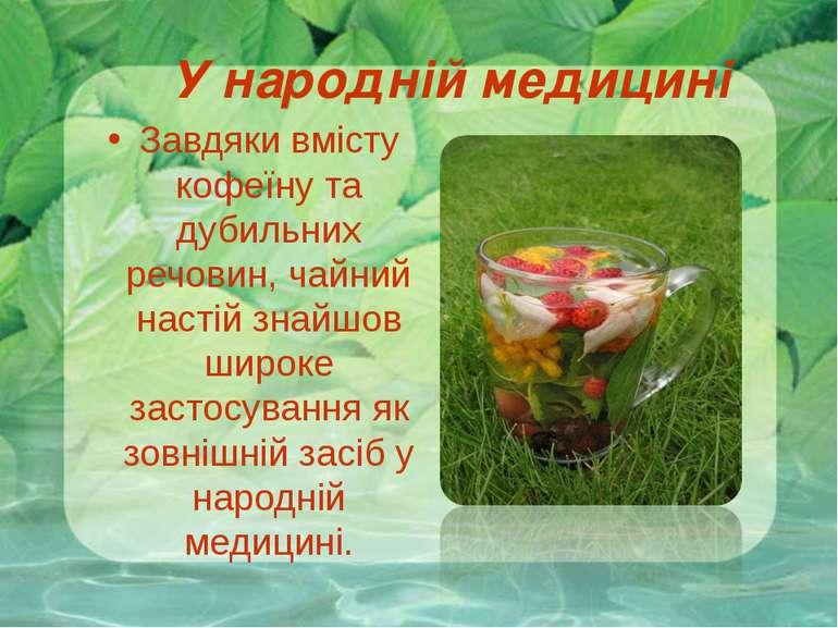 У народній медицині Завдяки вмісту кофеїну та дубильних речовин, чайний насті...
