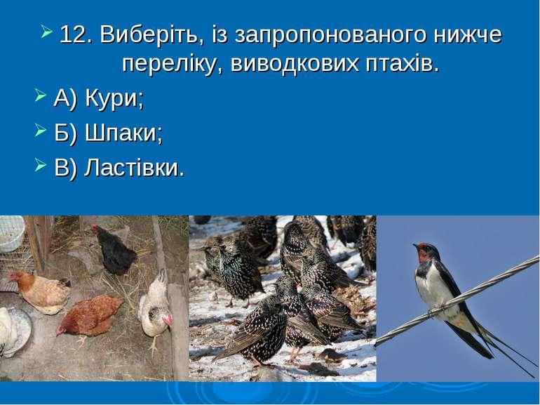 12. Виберіть, із запропонованого нижче переліку, виводкових птахів. А) Кури; ...