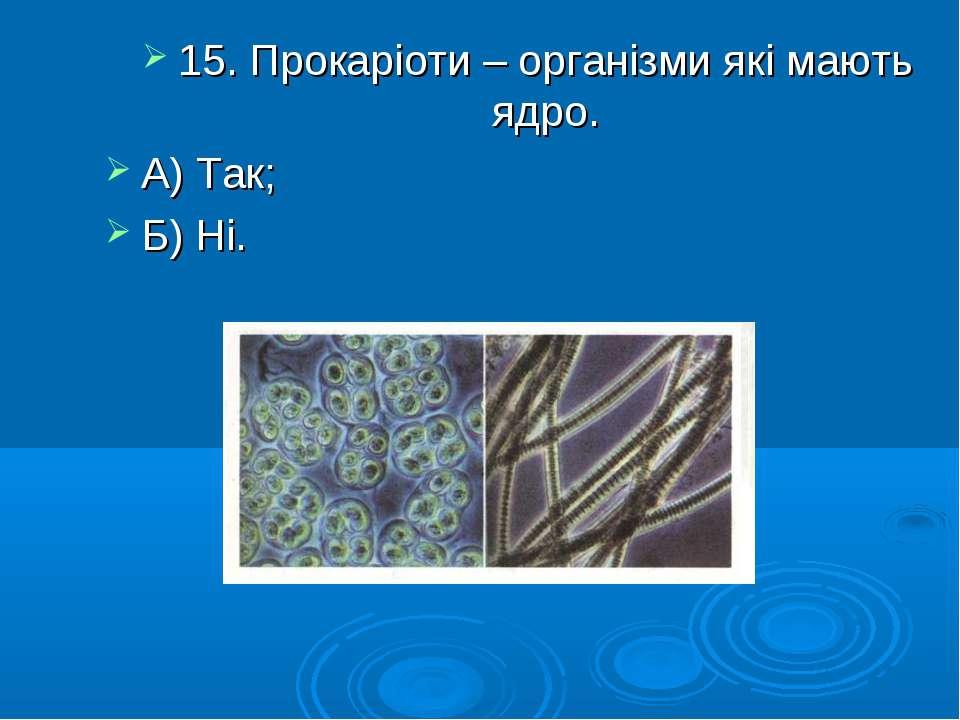 15. Прокаріоти – організми які мають ядро. А) Так; Б) Ні.