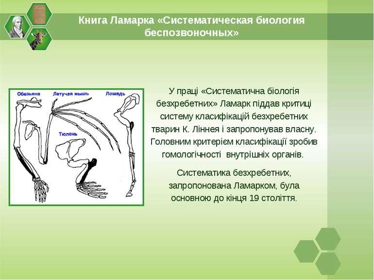 Книга Ламарка «Систематическая биология беспозвоночных» У праці «Систематична...