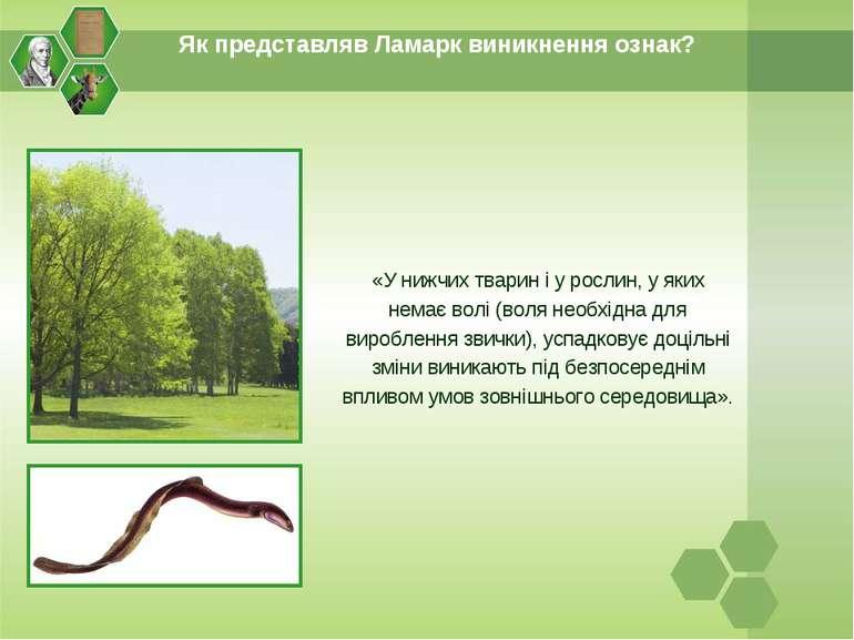 Як представляв Ламарк виникнення ознак? «У нижчих тварин і у рослин, у яких н...