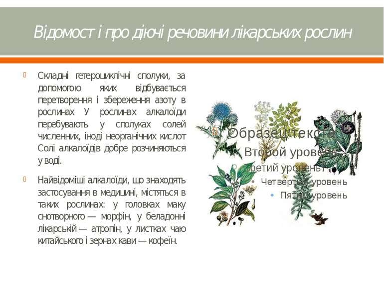 Відомості про діючі речовини лікарських рослин Складні гетероциклічні сполуки...