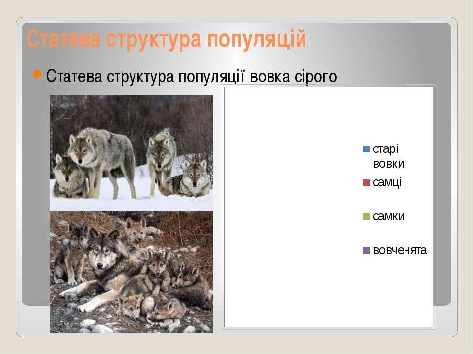 Статева структура популяцій Статева структура популяції вовка сірого