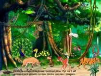 Найбільш багаті видами тропічні ліси. Тут на 1 м2 доводиться кілька сотень ти...