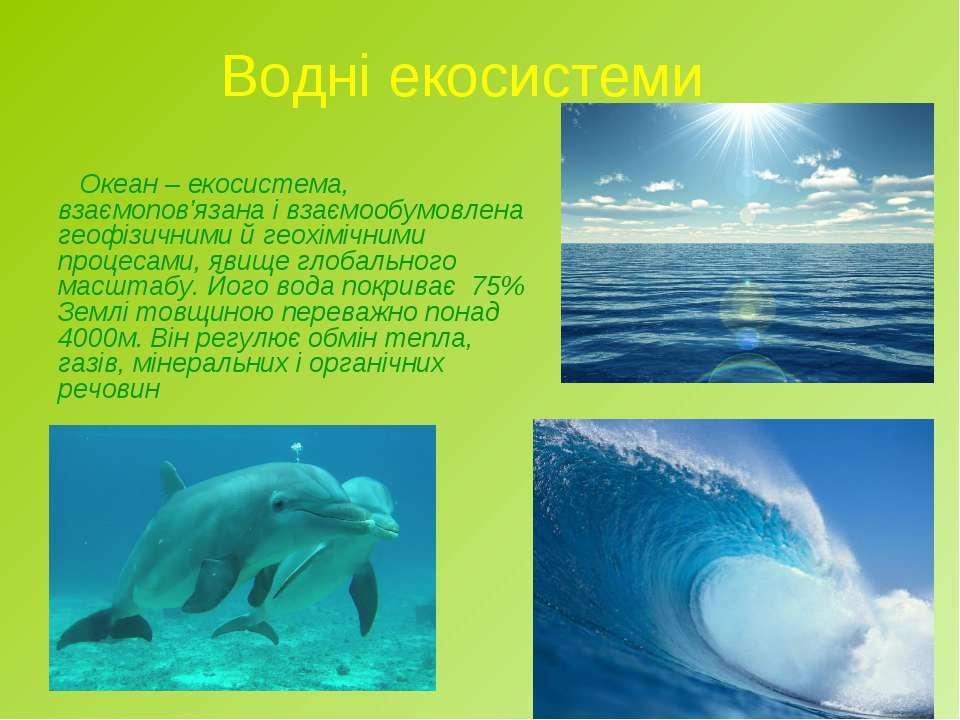 Водні екосистеми Океан – екосистема, взаємопов'язана і взаємообумовлена геофі...