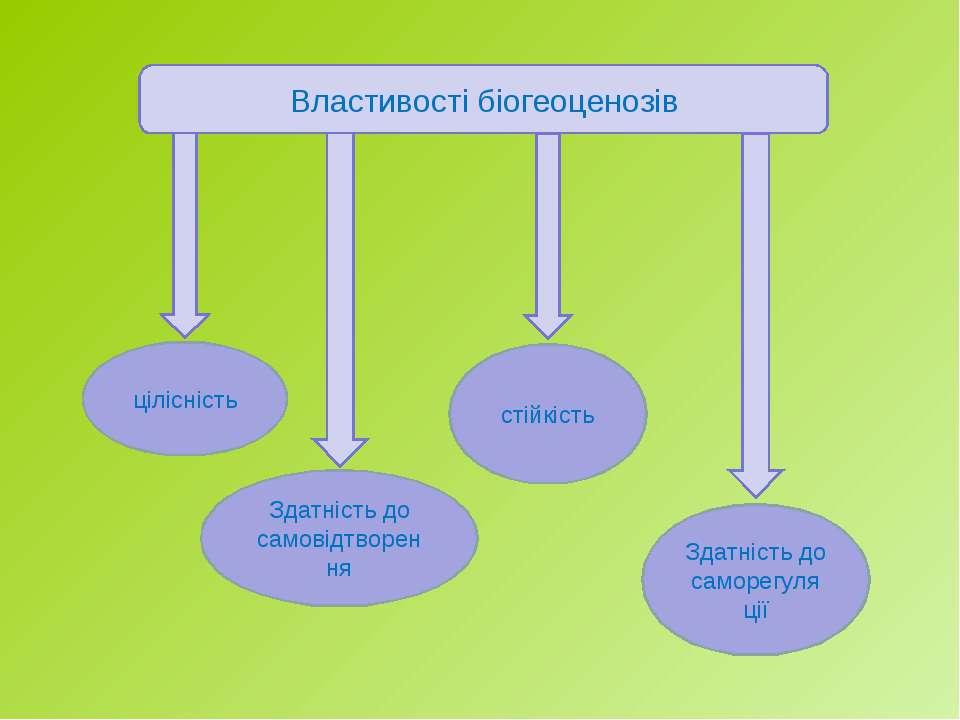 Властивості біогеоценозів цілісність Здатність до самовідтворення стійкість З...