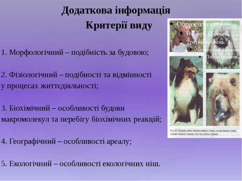 Критерії виду 1. Морфологічний – подібність за будовою; 2. Фізіологічний – по...
