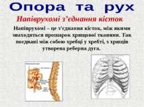 Напіврухомі з'єднання кісток Напіврухомі – це з'єднання кісток, між якими зна...